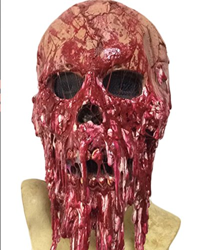 WELLIN Bloody Horror Melted Face Scary Halloween Mask Costume (Melted Face)
