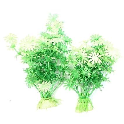 Amazon.com : eDealMax 2-pieza de plástico pescado ornamento planta ...