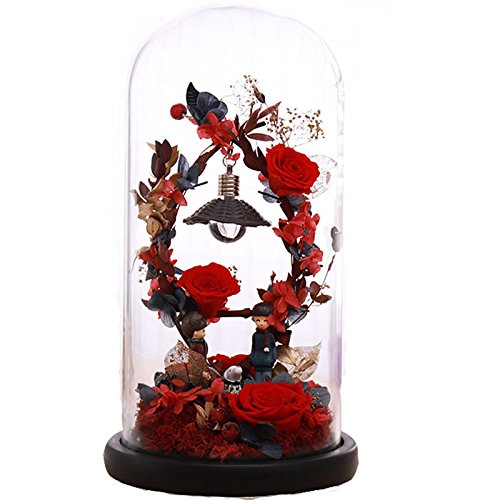 Preserved Fresh Flower, Live Forever Rose, Enchanted Rose,Natural Eternal Life Rose in Glass Dome Cover with Gift Box for Valentine's Day, Mother's Day, Anniversary, Birthday, wedding (red)
