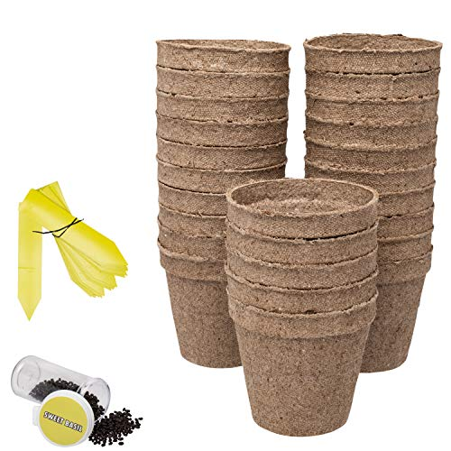 Ashbrook Outdoors Biodegradable Seed Starter Peat Pots - Large 3'' | 25 Pack of Gardening Pots for Herbs, Seeds, Flowers & Plants | Includes 25 Easy Label Tags & Bonus Basil Seeds | Full Growing Kit by Ashbrook Outdoors (Image #3)