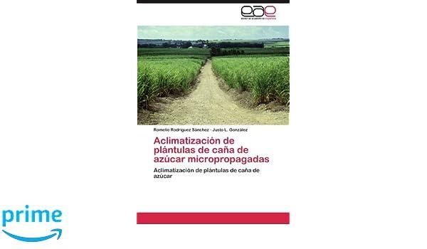 Amazon.com: Aclimatización de plántulas de caña de azúcar ...
