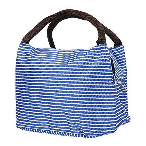 (Portable Lunch Bag,Insulation Cooler Storage Container Picnic Tote (Blue))