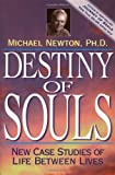 Book cover image for Destiny of Souls: New Case Studies of Life Between Lives