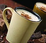 Bulk Decaffeinated French Vanilla Cappuccino Mix, 10 Lb. Case