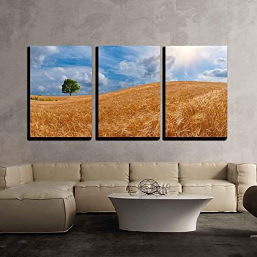 wall26 - 3 Piece Canvas Wall Art - Wheat Field with a Tree on The Horizon and The Sun in The Beautiful Sky - Modern Home Decor Stretched and Framed Ready to Hang - 16