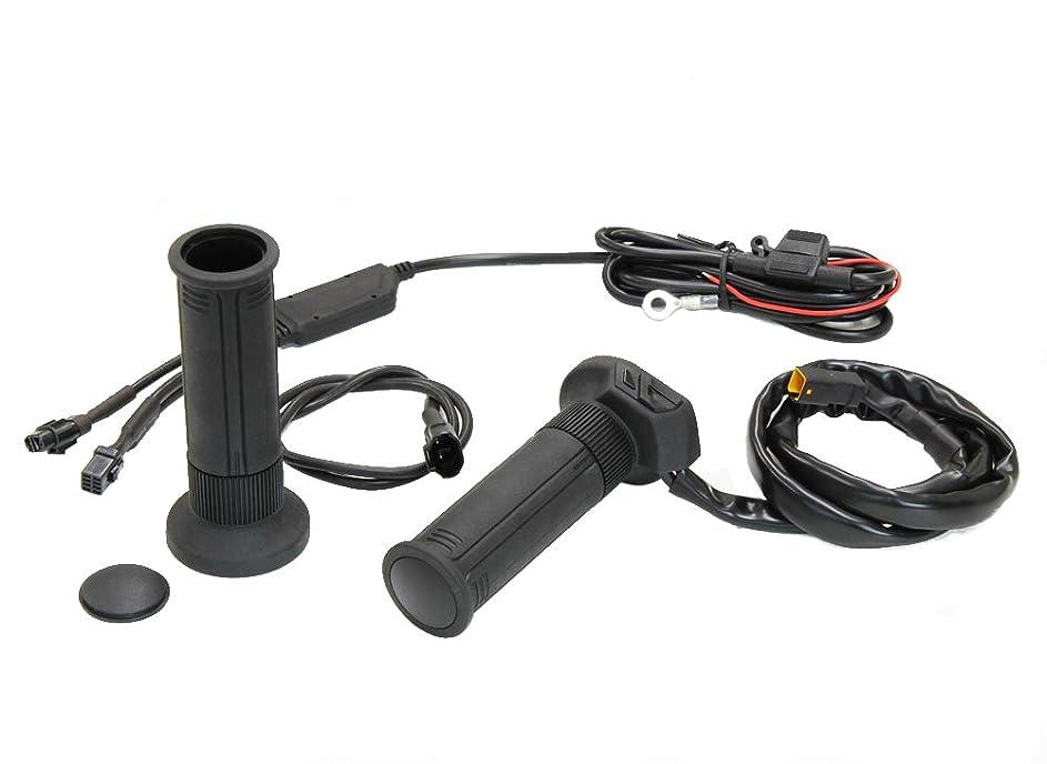 追加する凝縮する菊Yiteng ライセンス ナンバープレートステー ナンバープレートホルダー アルミ削り出し 角度調整 LEDライト付き 汎用 オートバイのアクセサリー(ブラック)