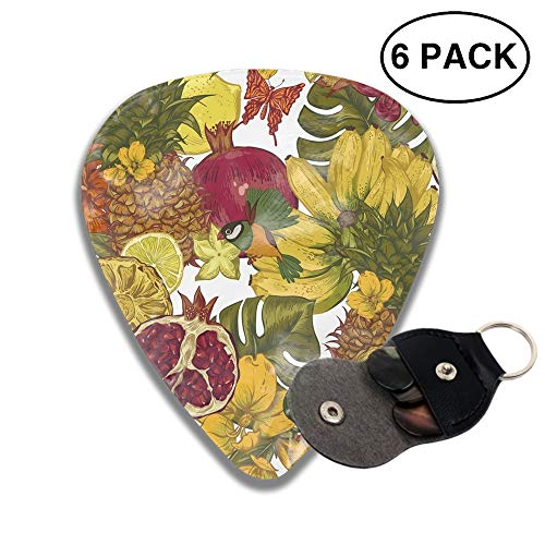 Fruits Banquet 3D Color Printed Guitar and Bass Pick Gift Silver
