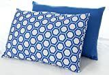 Blue Bed Pillow 2-Pack - Queen Pillows For Sleeping and Boys Bedroom Decor (Set of 2) - Colorful Bedding For Teens, College Dorms and Adults - Crafted In USA