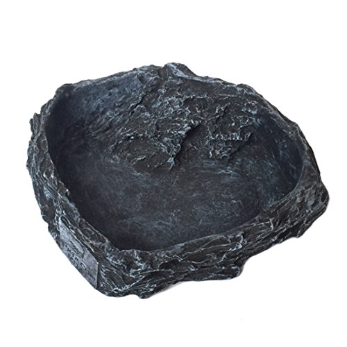 - Reptile Water Dish, Petforu Feeding Dish Food Tray Terrarium Bowl Pet Habitat Décor Rocks