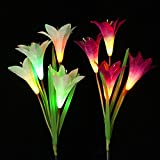 Lainin 2 Pack Outdoor Solar Powered Garden Stake Lights with 8 Lily Flowers,Multi-Color Changing LED Solar Decorative Lights for Garden,Flowerbed, Patio and Park(Purple & White)