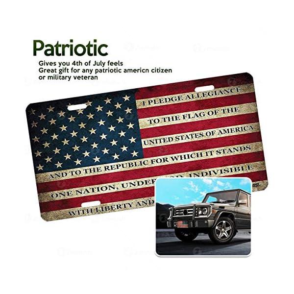 sparkling license plate frame