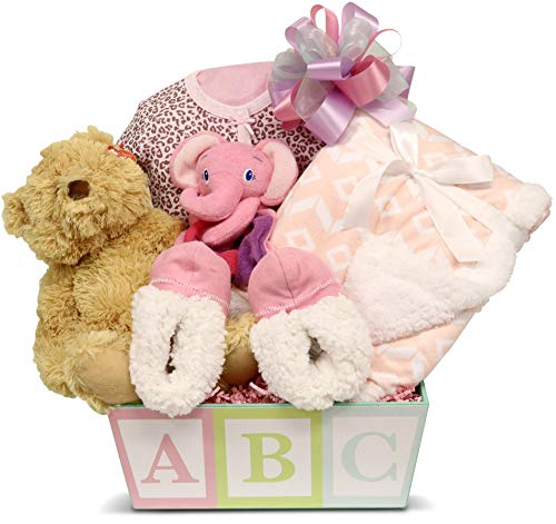 Newborn Baby Girl Gift Basket with Onesie, Blanket and Slipper Set, Plush and Toys ...