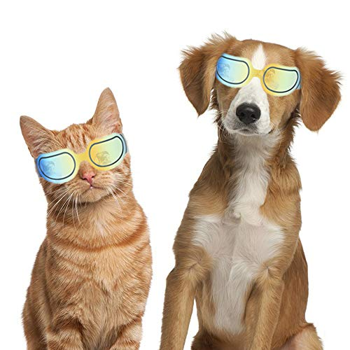 Dogs Goggles Pet Motorcycle Sunglasses Waterproof Windproof UV Protection for Small Dogs Doggy Puppy and Cats Glasses - Vet Recommended Eye Protection (Bright Yellow) by HEE PARK