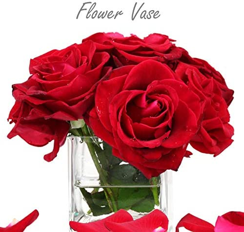 Cheap cube vases _image0