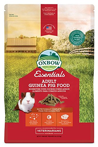 51rBBau8MML Oxbow Animal Health Cavy Cuisine Adult Guinea Pig Fortified Small Animal Feeds, 5-Pound
