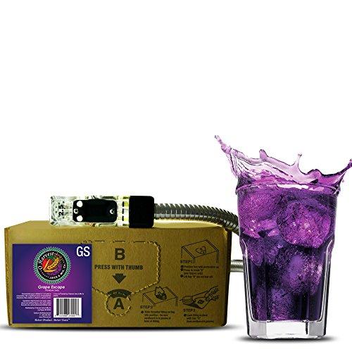 Grape Escape Craft Grape Soda (3 Gallon Bag-in-Box Syrup Concentrate) - Box Pours 18 Gallons of Grape Soda - Use with Bar Gun, Soda Fountain or SodaStream