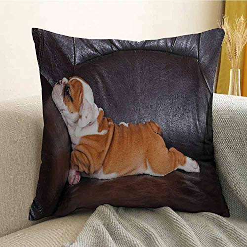 (English Bulldog Printed Custom Pillowcase Puppy Resting on a Sofa Funny Animal Photography Cute Canine Decorative Sofa Hug Pillowcase W24 x L24 Inch Seal Brown White Brown)