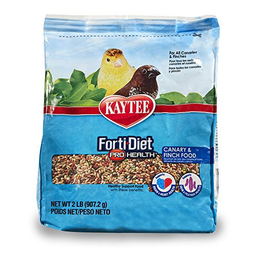 Kaytee Forti-Diet Pro Health Canary & Finch Food, 2 lb (Finch Avian Seed Bird)