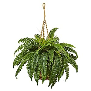Nearly Natural 6930 Boston Fern Hanging Basket 50