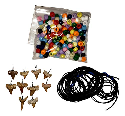 Make-Your-Own Fossil Shark Tooth Necklace Kits - Set of - Necklace Jewelry Tooth