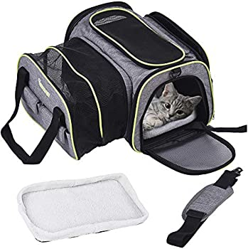 Dadypet Airline Approved Pet Carrier