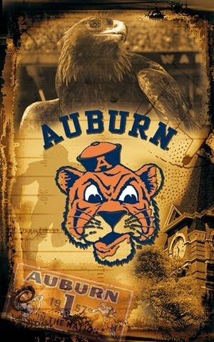 Auburn University Tigers Vintage Wall Mural Wallpaper 30quot