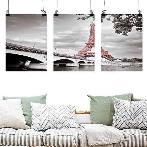 Agoza Printing Oil Painting Paris City Decor Eiffel Tower Bridge Capital City Cloudscape Monochrome Selective Colorization Picture Print Painting Home Decor Prints Posters 3 Panels 24x35inchx3pcs