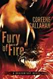 fury of fire dragonfury series