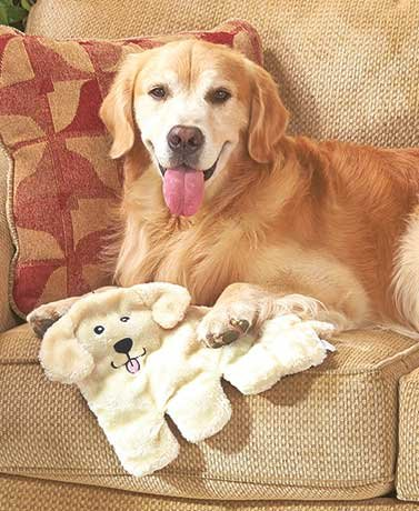 Dog Breed Squeakie Pup™ Pads (Labrador) for sale  Delivered anywhere in USA