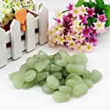Asenart Luminous Stone Glow in the Dark Garden Pebbles Stone for your Driveway, Pathway, Wedding Favors, Decorative Fairy Garden and Decor DIY Decorative Glow Rocks (100 Pack) (Yellow green)
