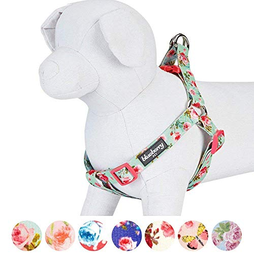 Dog Charming Print (Blueberry Pet Step-in Spring Scent Inspired Floral Rose Print Turquoise Dog Harness, Chest Girth 16.5