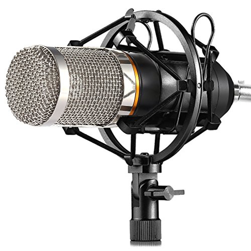 Price comparison product image ZINGYOU Condenser Microphone Kit,  BM-800 Mic Set with Adjustable Mic Suspension Scissor Arm,  Metal Shock Mount and Double-layer Pop Filter for Studio Recording & Brocasting (Bm-800 Microphone)