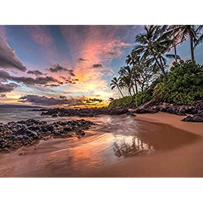 Sunset in Hawaii 1000 Pieces Wooden Jigsaw Puzzle: Toys & Games