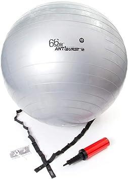 66FIT Bola de la Gimnasia con Bomba - Plata, 65 cm: Amazon.es ...