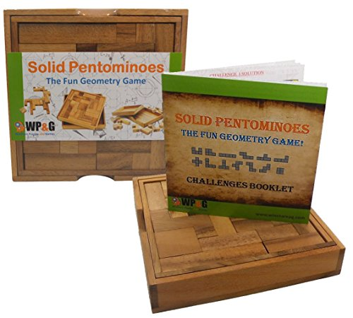 Solid Pentominoes - Wooden Brain Teaser Puzzle (Brain Puzzle Teaser Pentominoes)