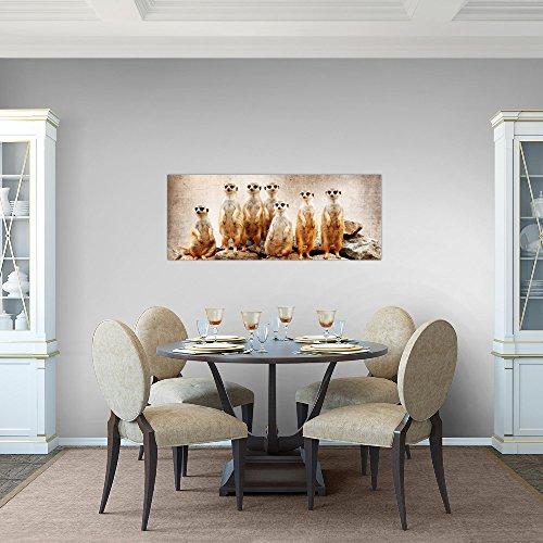 Bilder-Afrika-Erdmnnchen-Wandbild-Vlies-Leinwand-Bild-XXL-Format-Wandbilder-Wohnzimmer-Wohnung-Deko-Kunstdrucke-Braun-1-Teilig-MADE-IN-GERMANY-Fertig-zum-Aufhngen-005512a