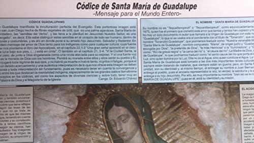 Amazon.com: Virgen de Guadalupe, Póster del codice, milagro ...