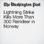 Lightning Strike Kills More Than 300 Reindeer in Norway | Associated Press