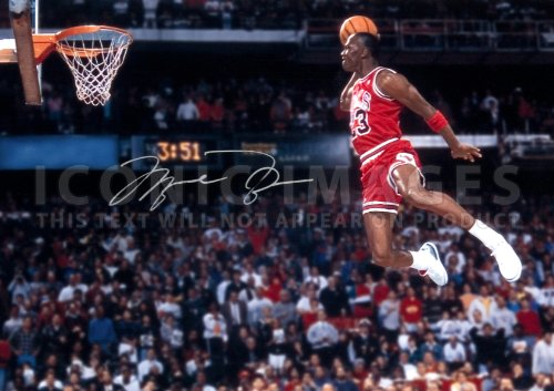 (11.7 X 8.3) Michael Jordan NBA Chicago Bulls Print Signed (Pre-print Autograph) by Iconic Images