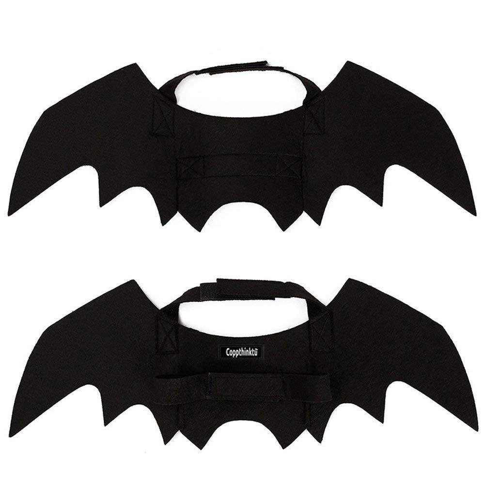 Bat wings for a pet's halloween costume