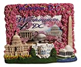 Cherry Blossom Themed Washington Monument, Jefferson Memorial, White House & U.S. Capitol Washington DC Decorative Picture Frame - Washington DC Souvenirs