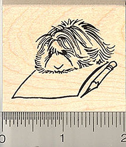Guinea Pig Writing Letter Rubber Stamp, Long Haired Peruvian