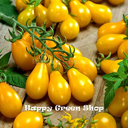 Vegetable Tomato - Yellow pear - Cherry Bell - 420 Seeds