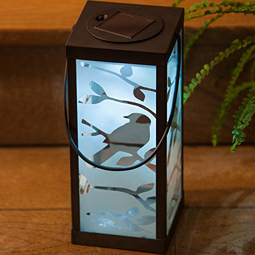 Types Of Backyard Birds (CEDAR HOME Solar Lantern Outdoor LED Light Portable Waterproof Frosted Metal Glass Hanging Lamp with Hanger, 4.5