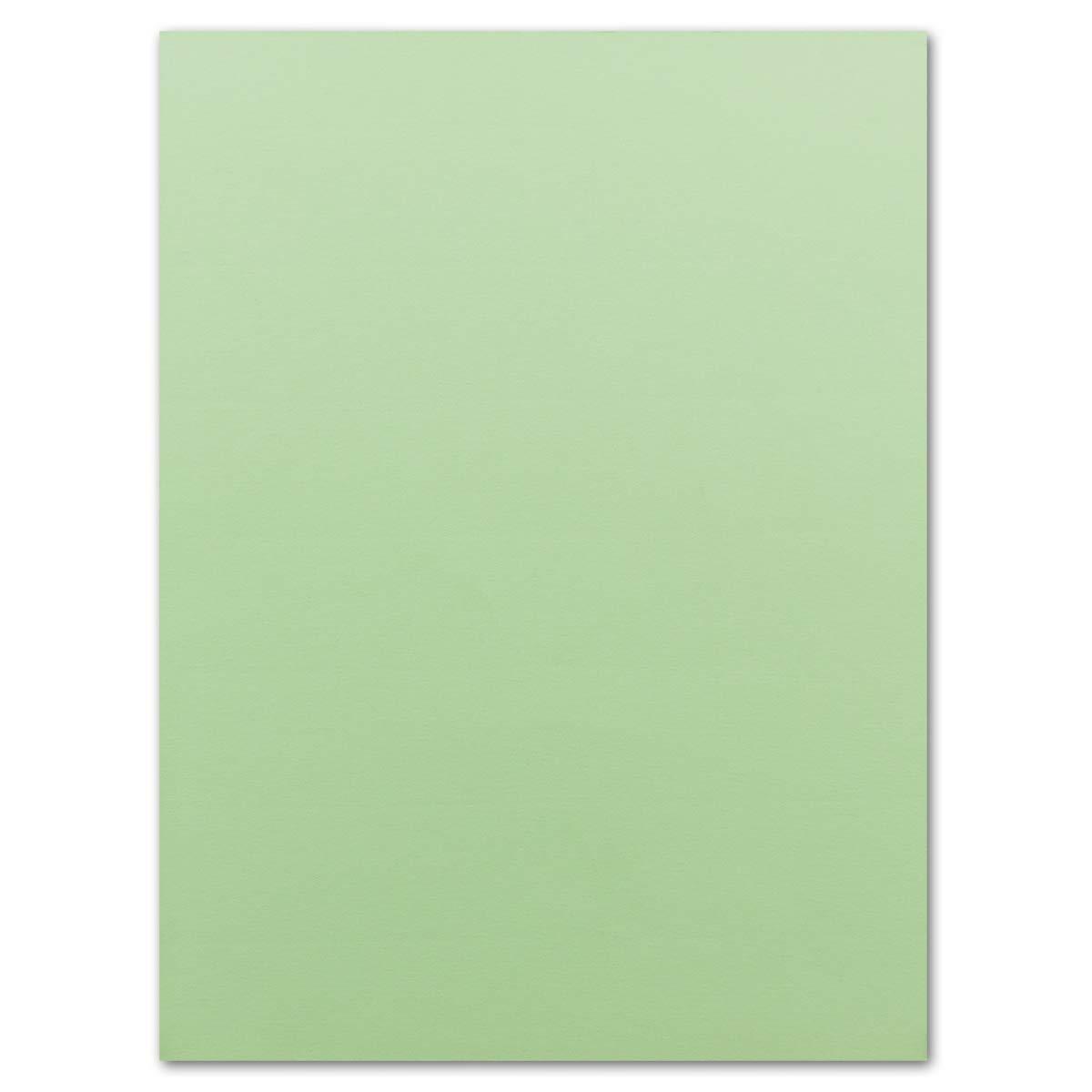 Ton-Karton Fogli di carta formato DIN A4 160 g//m2 50 Bogen verde chiaro