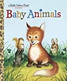 Baby Animals (Little Golden Book)