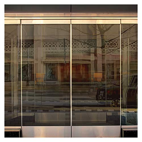 (BDF BRZ35 Window Film Bronze Sun and Heat Control (Medium) - 36in X 14ft)