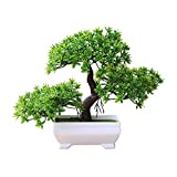 Finance Plan The Latest Welcoming Pine Bonsai Simulation Artificial Potted Plant Ornament Home Decor Green