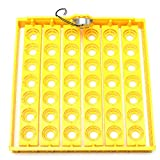 42 Position 220V Eggs Turner Automatic Chicken Quail Bird Poultry Egg Incubator Tray - Tools & Home Improvement Hand Tools - 1x 42 Chicken / Quail Egg Tray