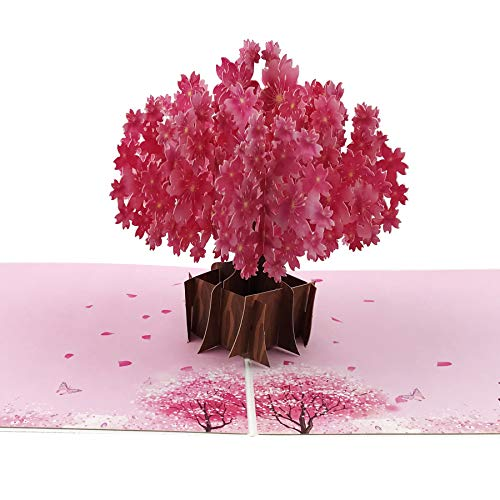 W&X 3D Cherry Blossom Pop Up Cards, 3D Greeting Card, 3D Flower Card, Pop Out Cards Including Envelope and Glue Best for Spring Card, Birthday Card,Anniversary,Congratulations,Tree Card 1 Pack